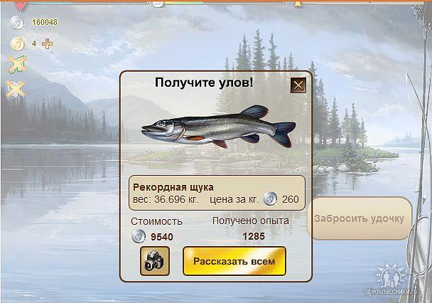 бот ради рыбное место