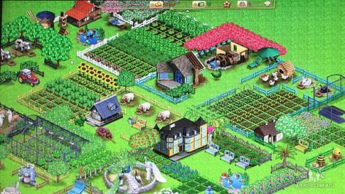 Территория фермеров одноклассники правила игры.